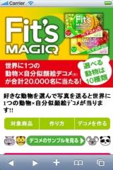 Fit's MAGIQ